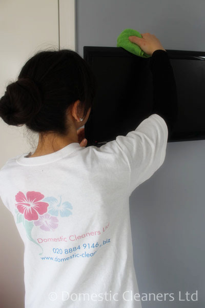Tips to support you with choosing professional Domestic Cleaners