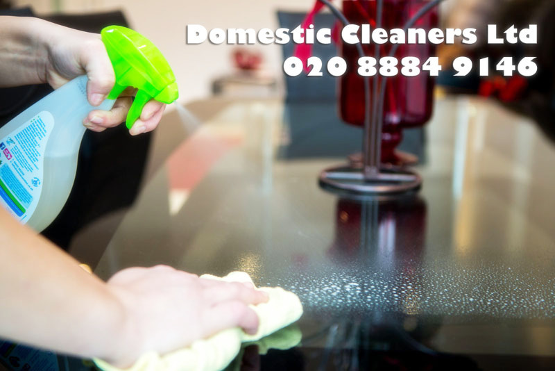 Why should you use Domestic Cleaners?